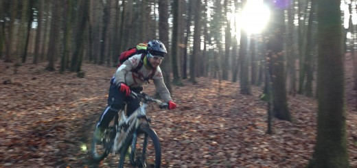 SPECIALIZED_Stumpjumper_FSR_Elite_29_2014_pedalritterinnen.