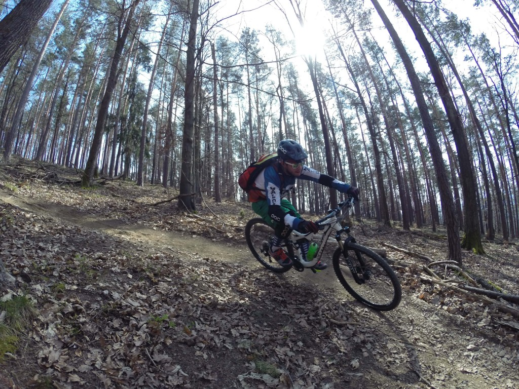 PECIALIZED_Stumpjumper_FSR_Elite_29_Graz_Platte_Dürrgraben_Mountainbike_PedalritterInnen_Gravity26_Testbericht_1.jpg
