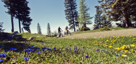 schoeckl-trail-area-enduro-freeride-mountainbike-bike-MTB_035-750x500