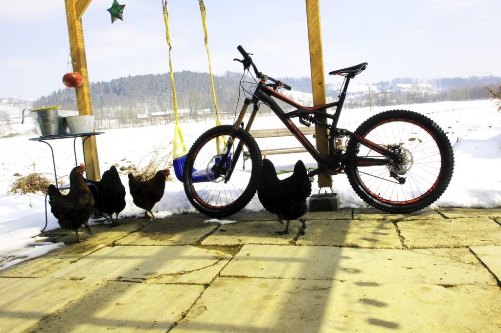 web_bike_Radaelli_Specialized Enduro Expert Evo 2013_IMG_0412