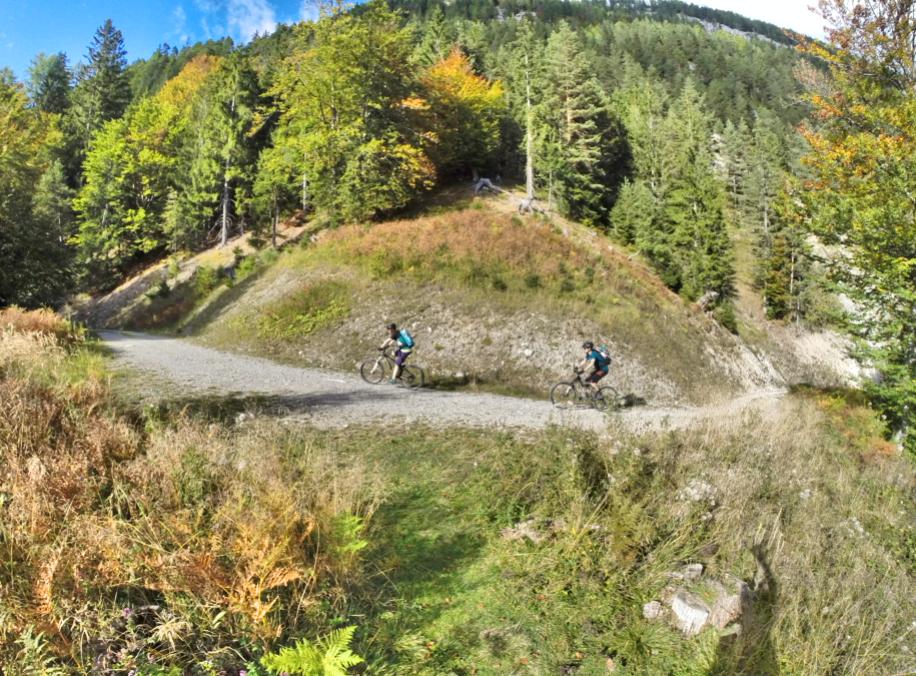 weissensee-mountainbike-bikefex-pedalritterinnen-mountainbikeguide-kaernten-austria-seerunde-panorama